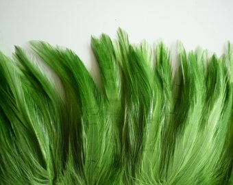 COQUE HACKLE, Grass Green  / 653