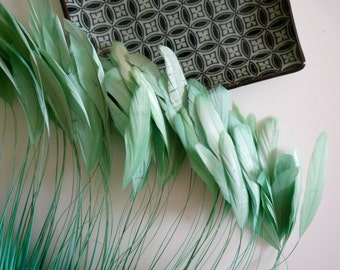 STRIPPED COQUE TAIL /  Mint , Pool  Green /  1119