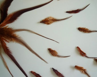LONG  FEATHERS /  Thunder - Red Earthy tone / 701 - 1 / BOGO