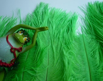 DELICATA OSTRICH PLUMES  , Bright Lime Green /  2004