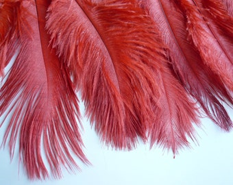 DELICATA OSTRICH PLUMES  ,  Coral Red  /  2003