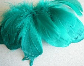 GOOSE COQUILLE FEATHERS, Jade, Oasis Green  / 422