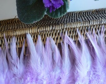 COQUE TAIL  Exclusive Quality / Wisteria, Light Purple  /  673 / Rollback