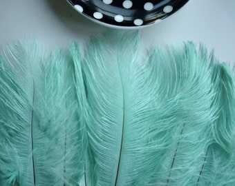 DELICATA OSTRICH PLUMES  , Mint Green , /  2008