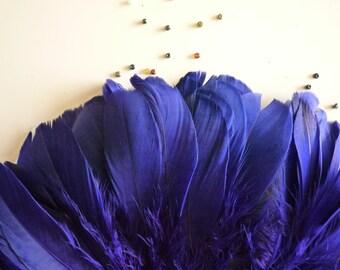PRIMA GOOSE  ,  Deep African Violet Purple  /  PR - 31
