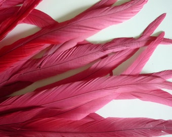 ROOSTER TAIL Feathers  XXX - long  /  Lipstick, Watermelon pink / 1102