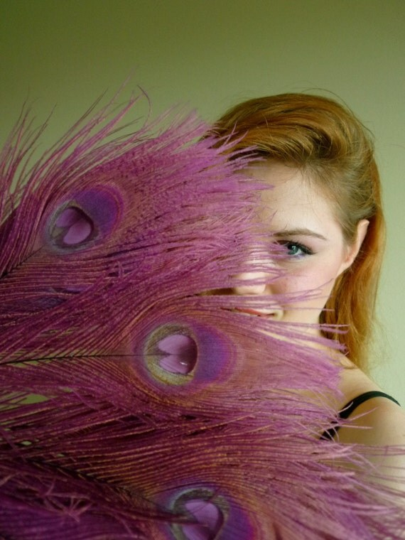 BLEACHED PEACOCK FEATHERS/ Iridescent Color, Light Plum, Japanese Eggplant /  529