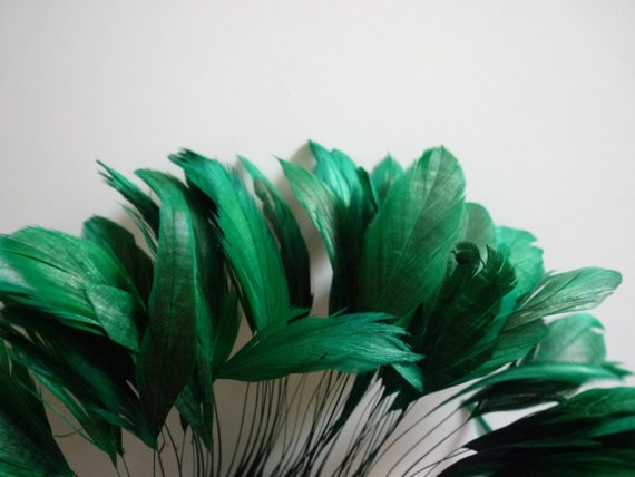 STRIPPED COQUE TAIL /Emerald Green / 20
