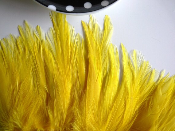 COQUE HACKLE, Canary Yellow  / 652 - 2