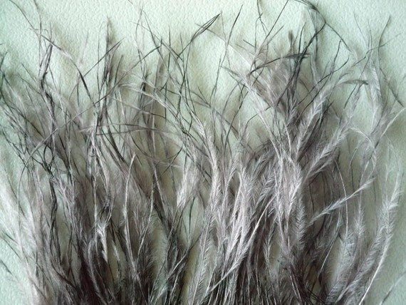 OSTRICH FEATHER FRINGE Antique Grey / 312