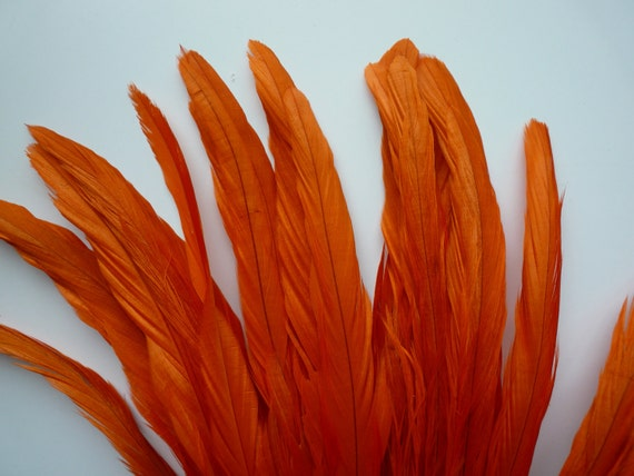 COQUE TAIL FEATHERS Loose / Carrot Orange  / 166 - A