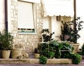 Florence Garden Fine Art Italy Photograph Decor Botanical Rustic Travel Romance Italian Architecture
