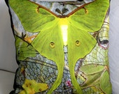Fabric - LUNA MOTHS 2 - 2 18x18 Inch Panels  - two 18x18 panels - Fabric Designed by Billie Anderson in Bigfork Montana USA