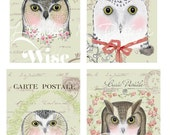 Pretty Owls--Digital Scrapbooking-Collage Sheet-Digital Image-Digital Card