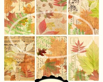 Delicious Autumn Backgrounds  Collage Sheet