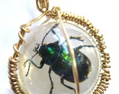 Green Beetle Wrapped Pendant Necklace