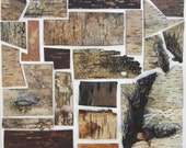 Discounted, Birch bark wall decor, Wood quilt