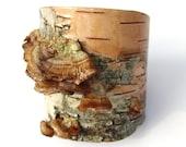 Large width birch bark cuff bracelet, Mushroom Colony I