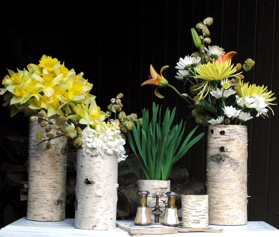 Sale, Collection of 5 birch bark vases