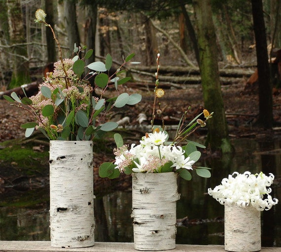 Collection of 3 birch bark vases, Natural