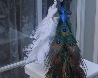 Exquisite Peacock Lovebird pair