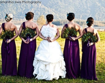 Elegant Peacock Feather Bridal Party Fan Collection in your choice of sizes