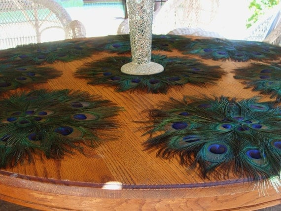 "Ten 16"" Peacock Feather Placemats"