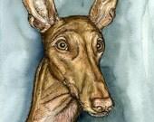 Pharaoh Hound Art Dog Print