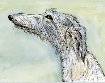 DOG ART- Lurcher Hound Print