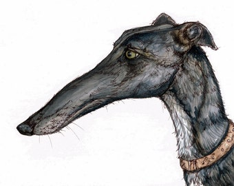 A Little Pronounced - Greyhound Dog Print by Elle J Wilson