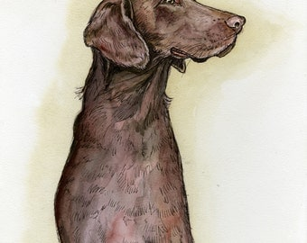For the love of chocolate - Labrador Dog Print