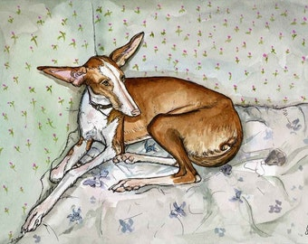 Room for thought - IBIZAN HOUND PRINT
