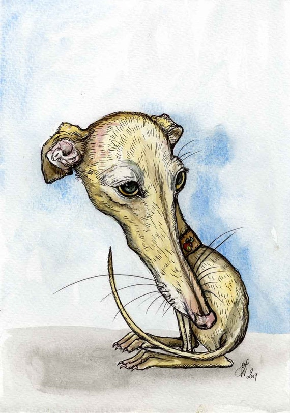 The Apple of my Eye - Italian Greyhound Dog Print - 5 X 7 INCH