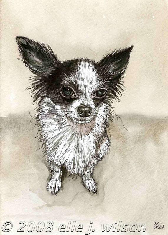 I may look cute but.... Chihuahua Art Dog Print