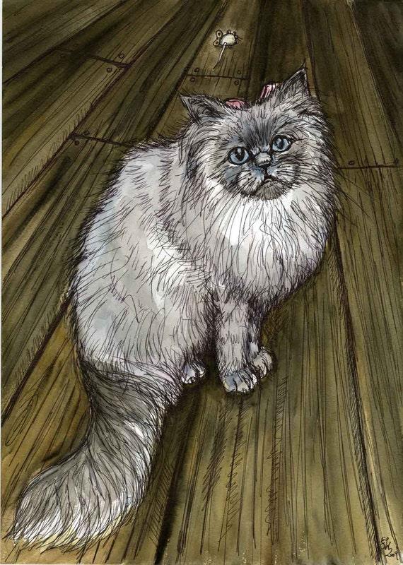 Himilayan Cat Art Print