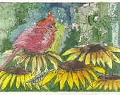 Male Cardinal on the Flowers ACEO Print Signed by Theodora