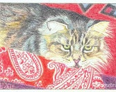 ACEO Maine Coon Cat on Red by D.Demetri