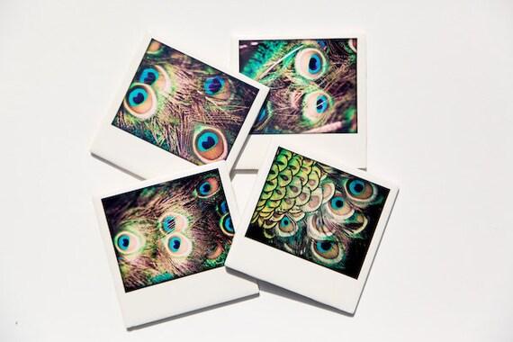 Peacock Coasters, Drink Coaster Set of 4, Ceramic Coasters,  original fine art photography by  Jennifer Jackson