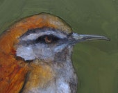 WREN BIRD ART Giclee print from my original oil painting