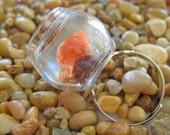 Miniature Pet Goldfish Bowl Ring