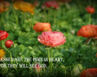 Original Print - Pure in Heart