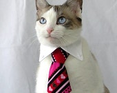 Size (XS) CUSTOMIZED - Pet Neck Tie