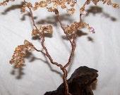 Golden Glass Dreaming Tree