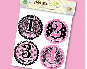 Baby Monthly Shirt Stickers - Princess Royalty