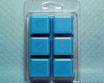 Blueberry Crumble Breakaway Clamshell PURE SOY Wax Tart Melts