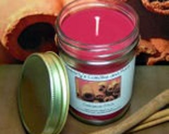Cinnamon Stick PURE SOY Mason Jar Candle