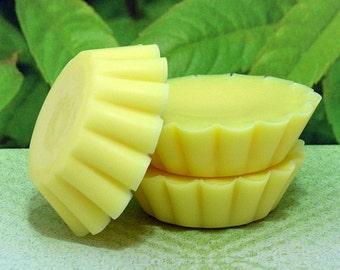 Lemon Verbena PURE SOY Tart Melts (Set of 4)