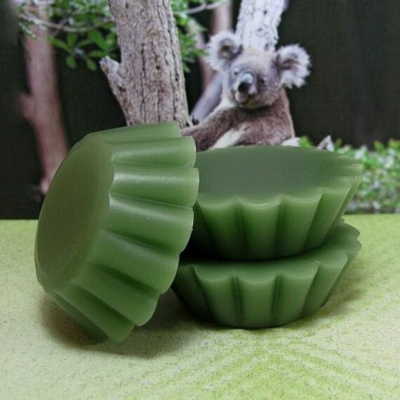 Eucalyptus PURE SOY Tart Melts (Set of 4)