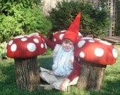 Toad Stool Mushroom