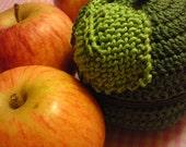 Teacher's Pet knit and crochet fruit protector pouch - dark green apple
